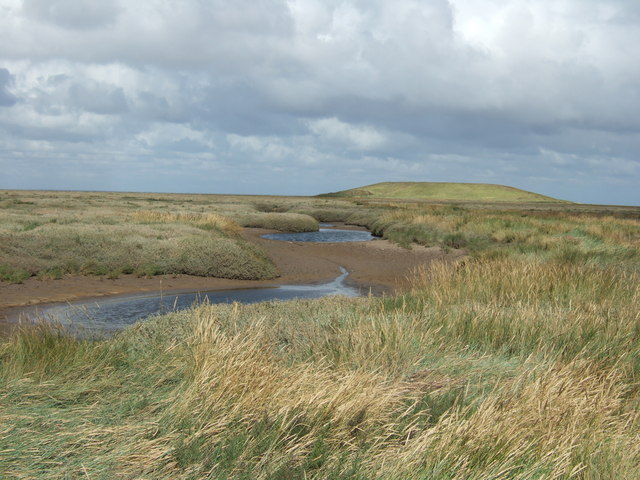 Salt marsh and offshore island in The Wash