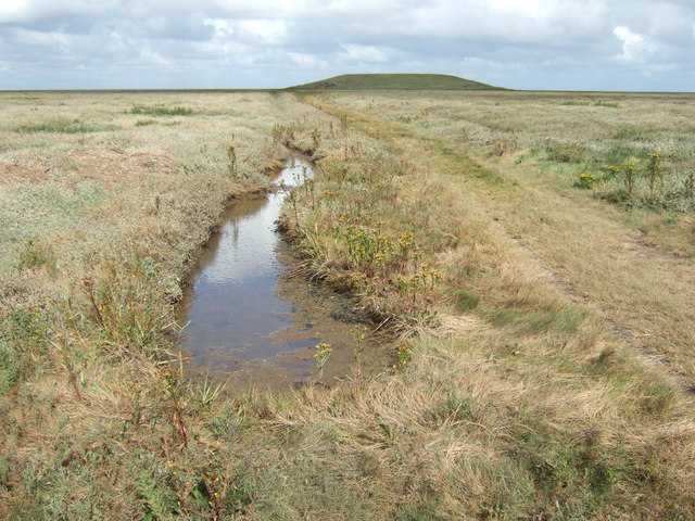 Track through the salt marsh to the island in The Wash