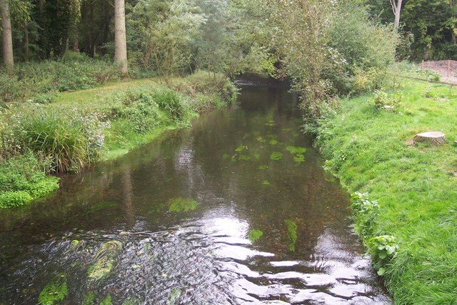 River Great Stour near Chilham Mill