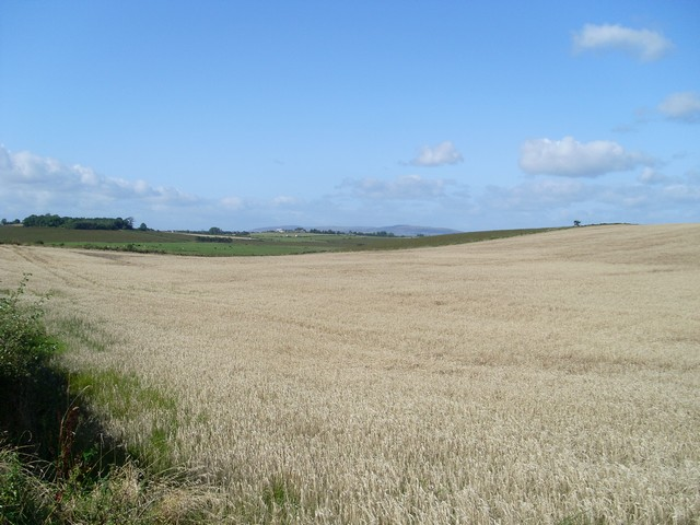 Farmland north of Langmuirhead Road