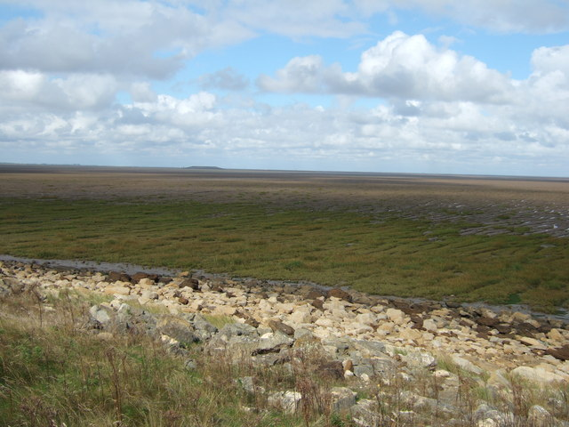 Salt marsh on The Breast Sand, The Wash