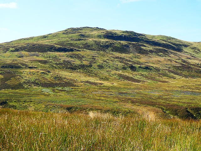 Moorland south of Dullator