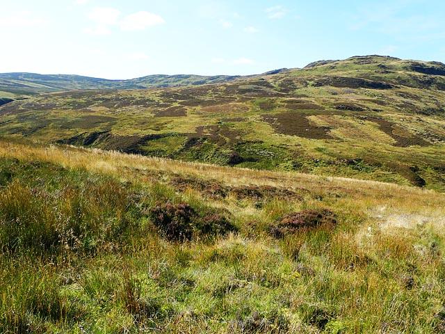 Moorland near Creag Bhiorach