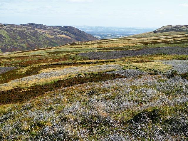 Moorland west of Glen Shee