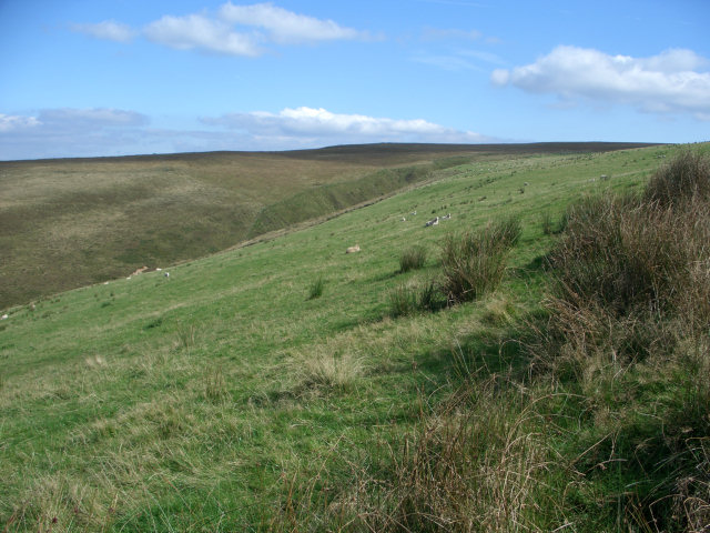 Grazing land and moorland on the slopes of Foel Trawsnant