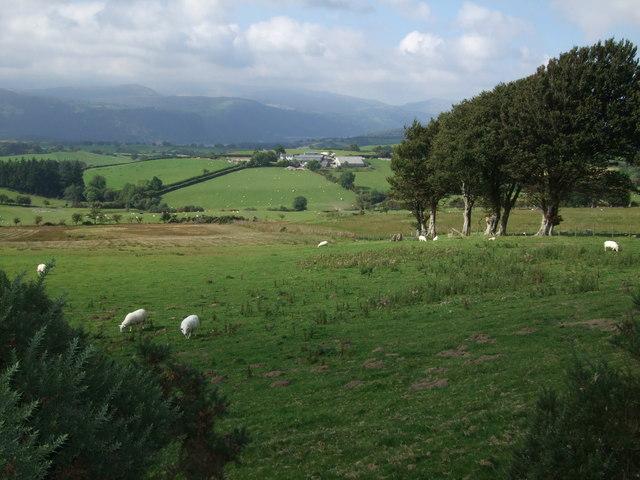Fields above Bryn Betws near Llanddoged