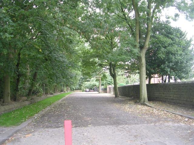 Park Avenue - Scatcherd Lane