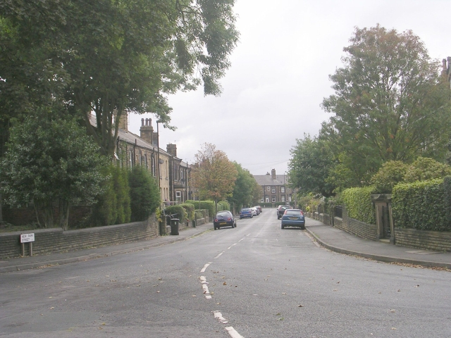 New Park Street - Scatcherd Lane
