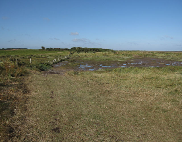 Muddy patch on the byway