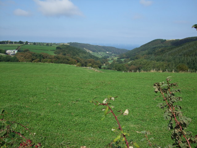 Field above Nant  - y - Groes valley