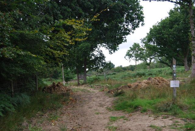 Tunbridge Wells Circular Path - Eridge Park