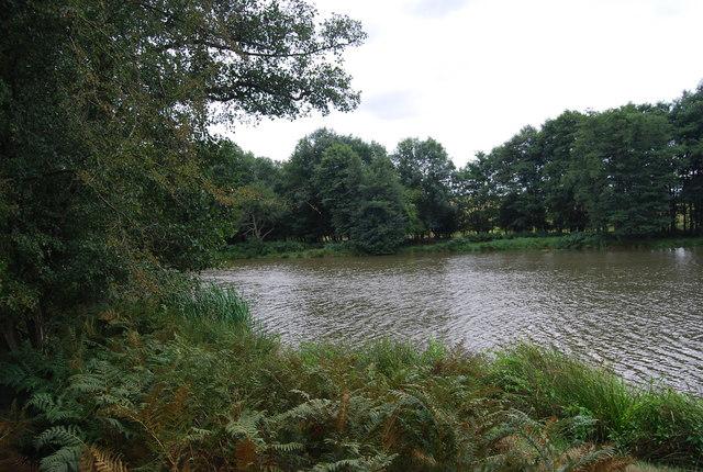 Small Lake by the Tunbridge Wells Circular Path, Eridge Park