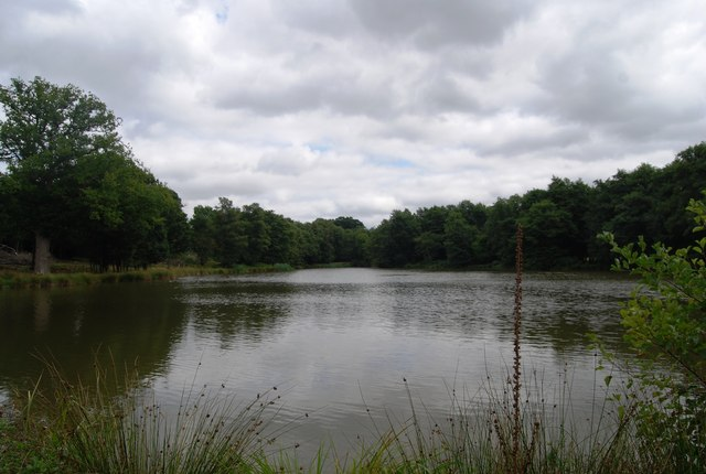 Small Lake by the Tunbridge Wells Circular Path, Eridge Park