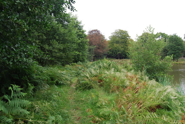 Tunbridge Wells Circular Path crosses the earth dam by a small lake, Eridge Park