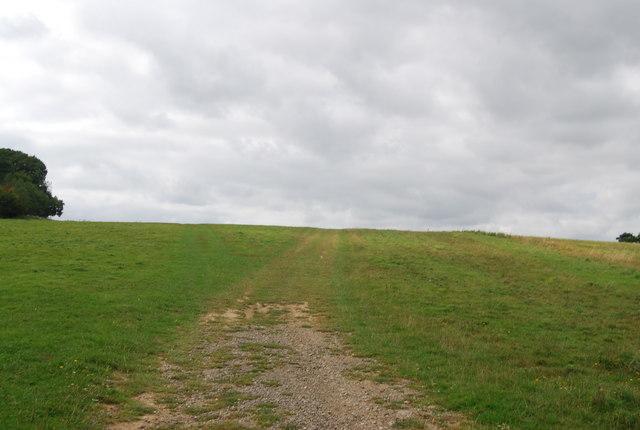 Tunbridge Wells Circular Path climbs a small hill, Eridge Park