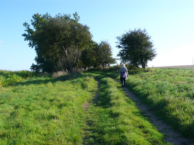 Track on Weam Common Hill