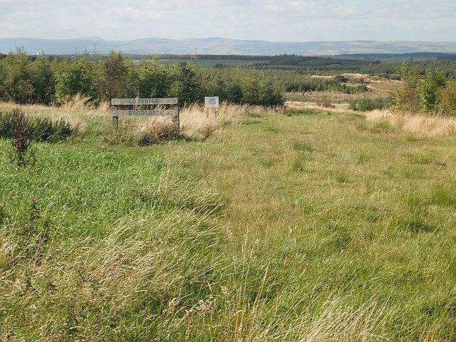 Longrigg Woodland