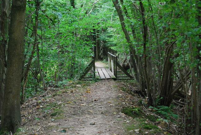 Footbridge in Forge Wood