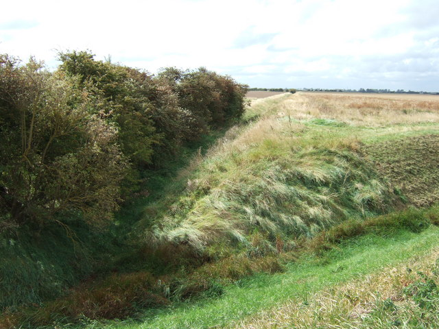 Overgrown drainage ditch on Wingland Marsh north of Terrington St Clement