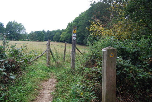 Waymarkers for the Tunbridge Wells Circular Path, Forge Wood