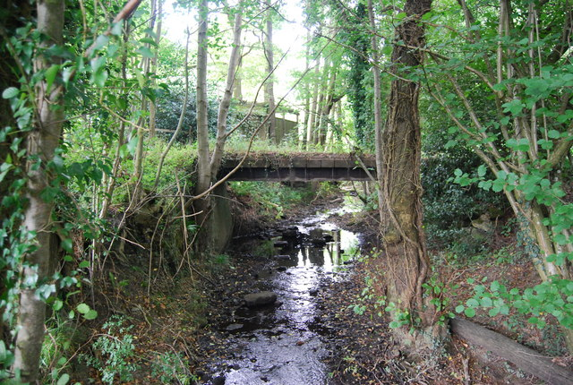 Bridge over a small stream, Forge Wood