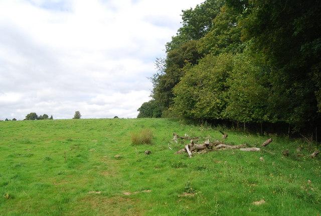 Tunbridge Wells Circular Path heading towards Eridge Green