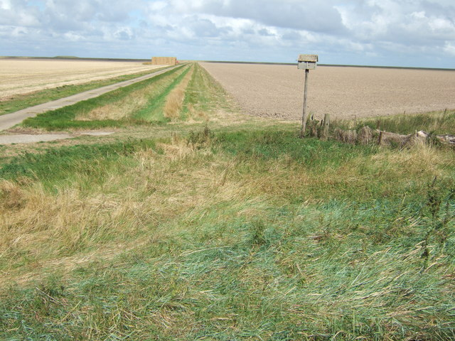Nesting box and farmland, New Inclosed Marsh