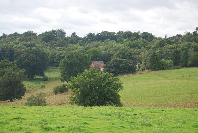 Looking towards Crown House, Eridge