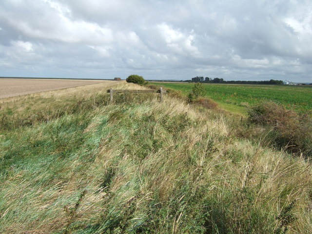 New Sea Bank north of Terrington St Clement