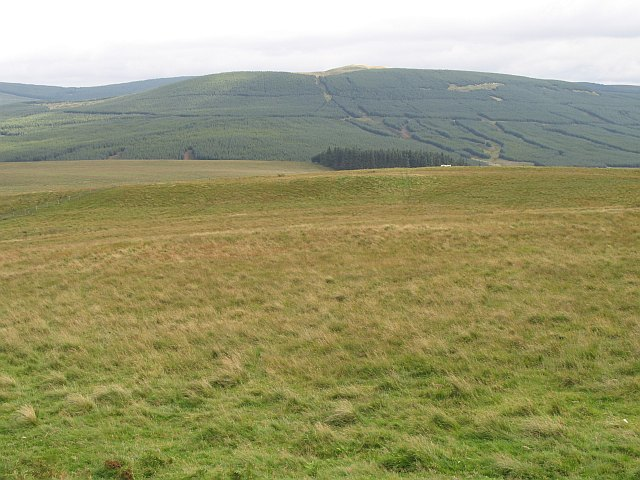 Southern side of Pike Fell