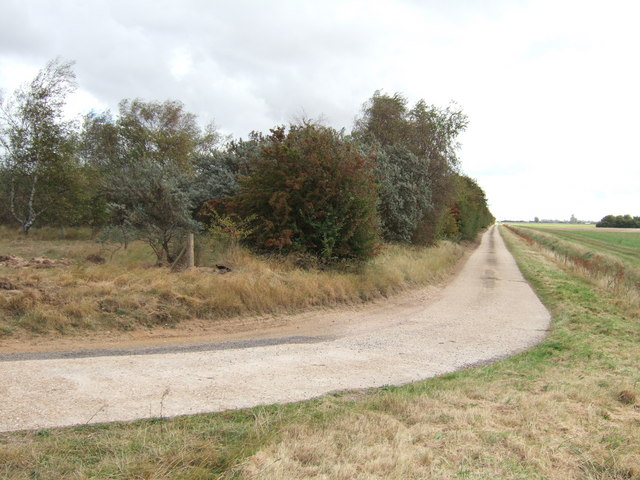 Road next to Sharpe's Bank north of Terrington St Clement