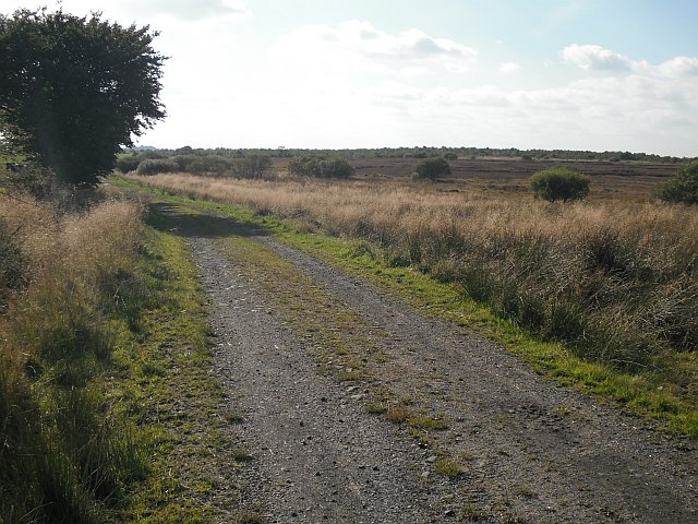 Track, Easterton