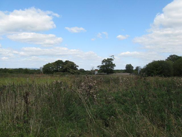 Disused silos at Holmbush Manor Farm