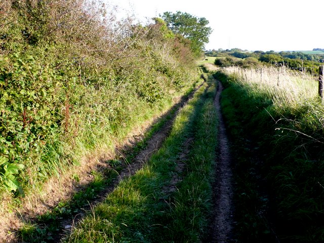 Wessex Ridgeway on Balls Hill