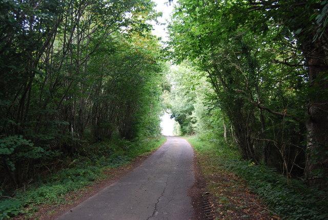 Road to Warren Farm, Eridge Rocks