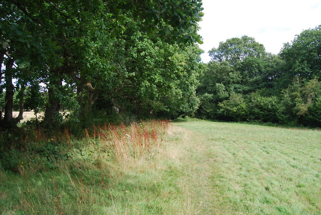 Tunbridge Wells Circular path follows a field edge east of Park Corner