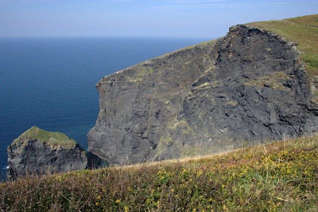 Buckator Cliff and Gull Rock