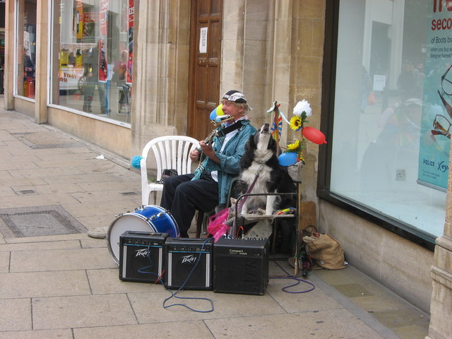 Street busker and dog