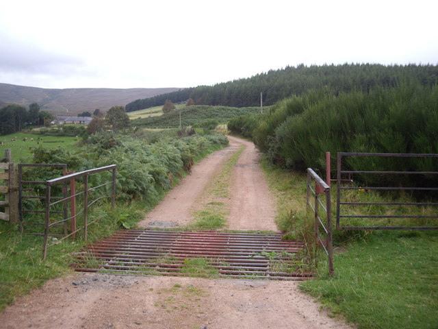 Cattle grid on track to Ballochan