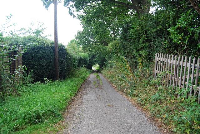 Track to Pinstraw Farm, Park Corner