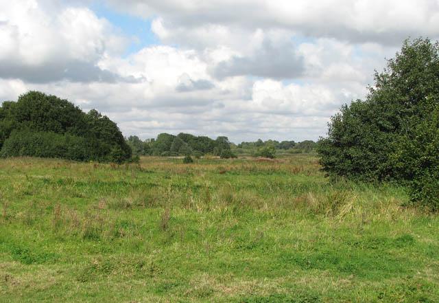 Pasture land west of Heckingham