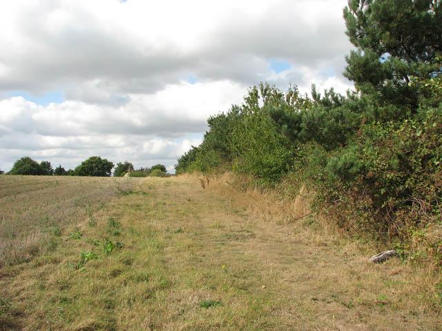 Skirting a field's edge