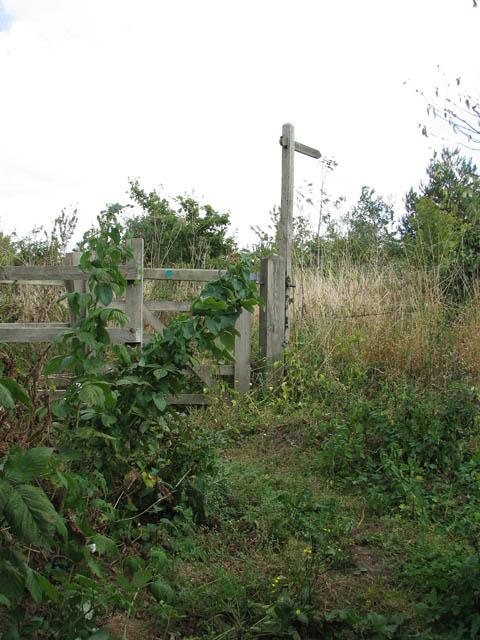 This way to Heckingham