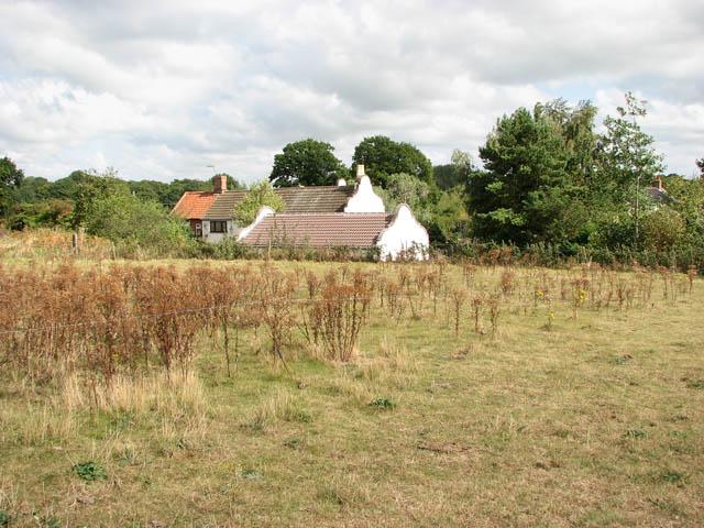 View across empty pastures