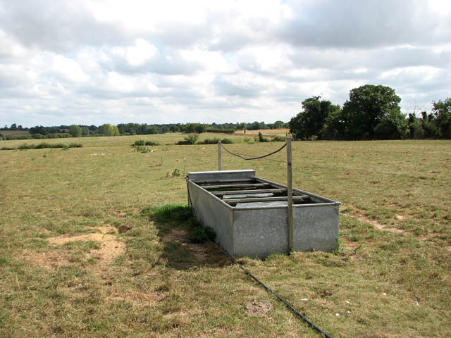 Cattle watering trough in empty pasture