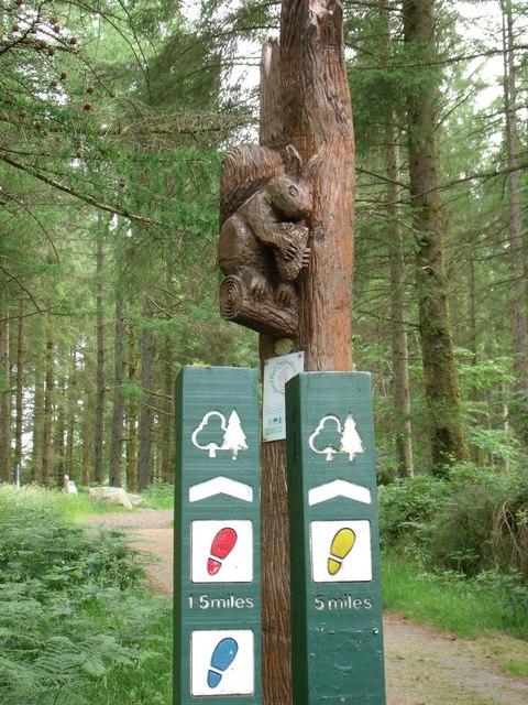 Guidepost near Glen Trool Visitor centre
