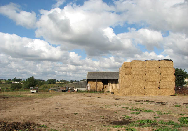 Straw bales by Beech Grove Farm
