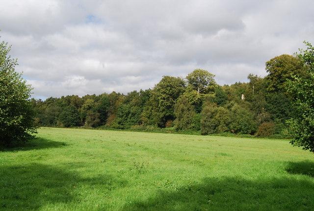 Grassy area between the Tunbridge Wells Circular Path & Harrison's Rocks Wood
