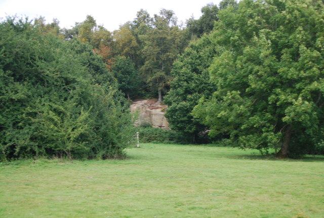 Outcrop of Tunbridge Wells Sandstone, Harrison's Rocks