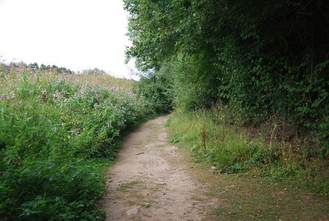 Tunbridge Wells Circular Path north of Harrison's Rocks